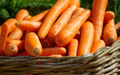 Chcesz rozpocząć rozszerzanie diety niemowlaka? Zacznij od warzyw. Podpowiadamy, które wybrać.